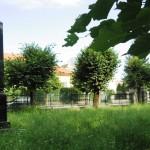 Františkina záhrada (17)