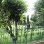 Františkina záhrada (4)