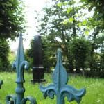 Františkina záhrada (5)