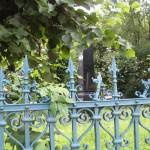 Františkina záhrada (6)